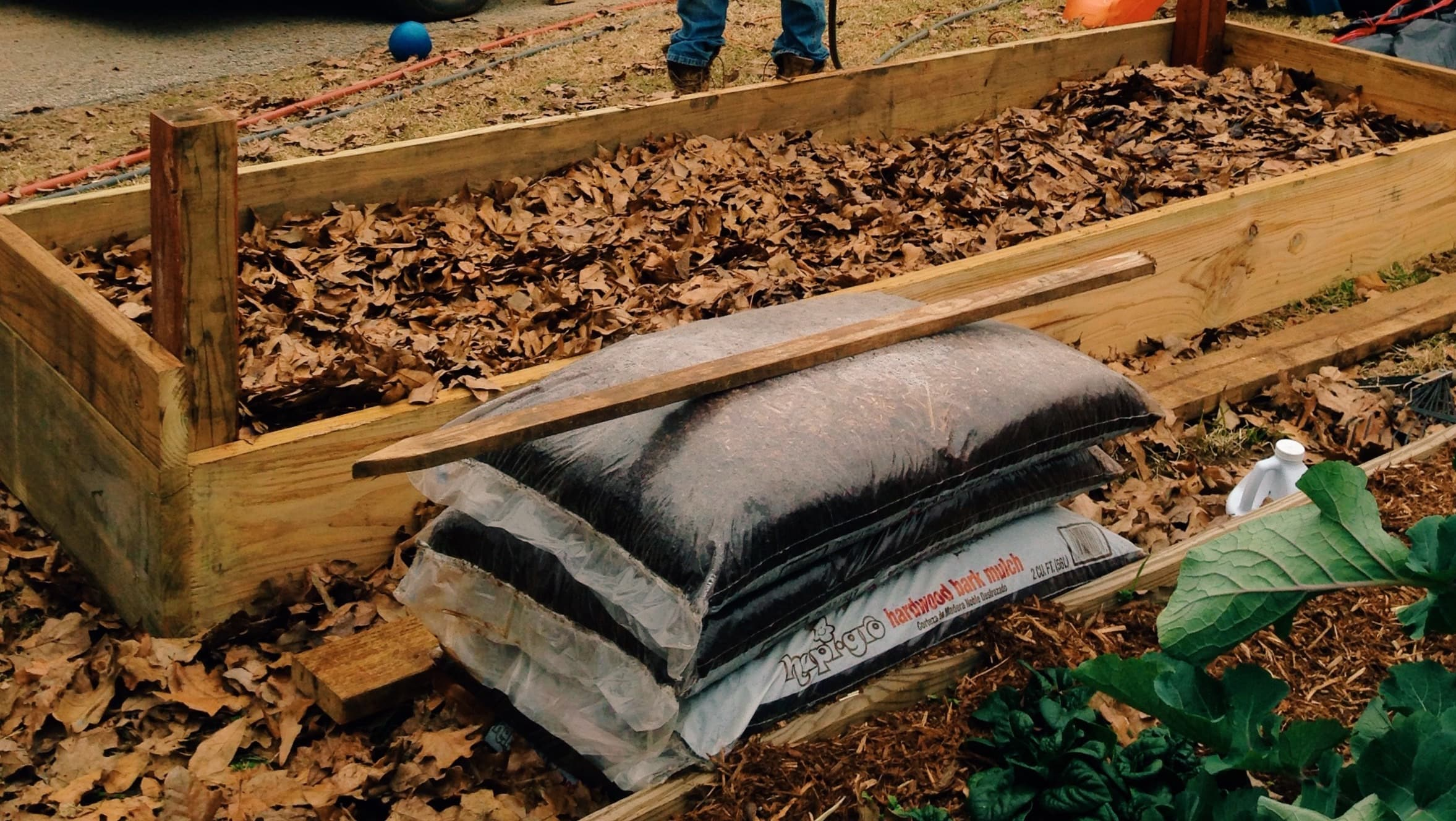 Building a raised comfrey bed