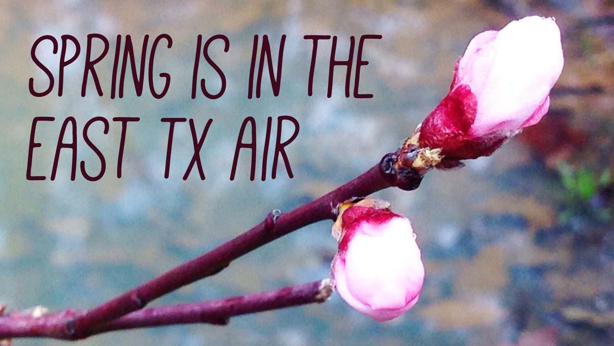 Spring is in the east texas air