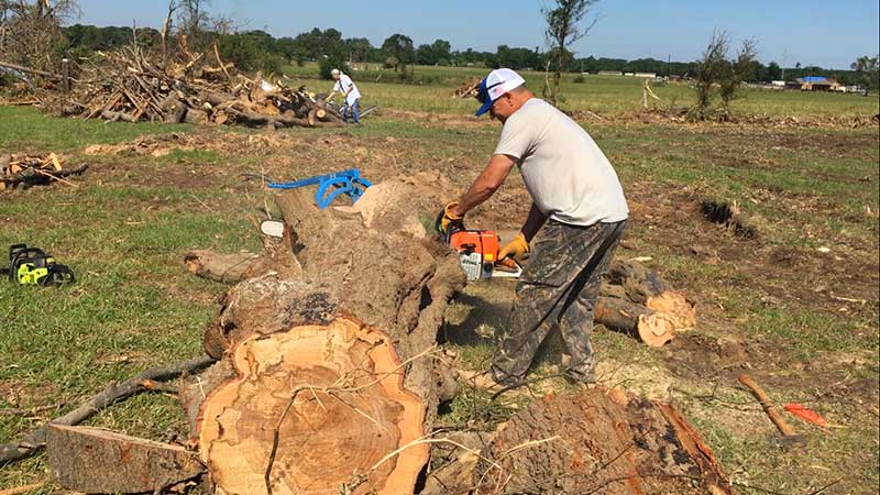a man cutting a large tree in the canton texas tornado aftermath