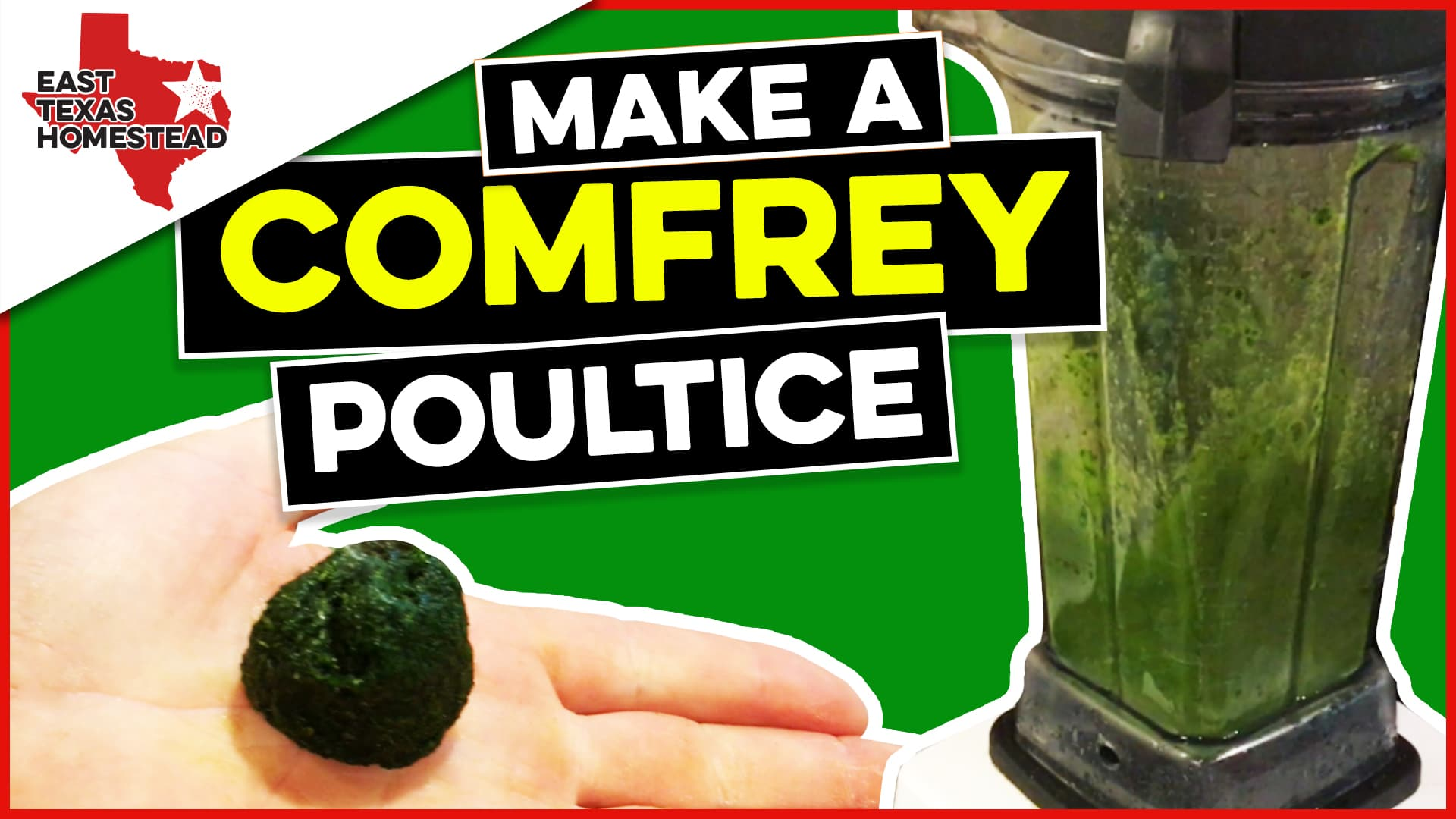 Featured image of how to make a comfrey poultice with a blender.